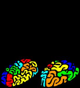 MusBlog Cérebros